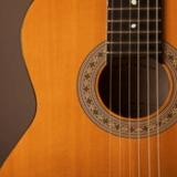 Curso de Guitarra Violão Acesso Total Mensal em oferta da loja Guitarpedia