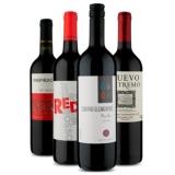 Kit com quatro vinhos no Vinho Fácil