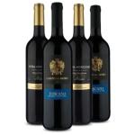 Saldão Adega Cheia: kits especiais com até 55% de desconto no Vinho Fácil
