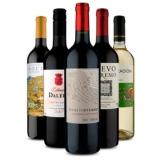 Kit com cinco vinhos ainda melhor em oferta da loja Vinho Fácil