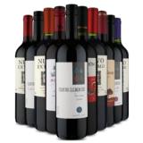 Kit com dez vinhos para todos os gostos em oferta da loja Vinho Fácil