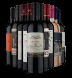 Kit com 10 Vinhos Chilenos e Argentinos com 61% de desconto no Vinho Fácil